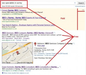 SEO specialists in Surrey - Google results