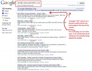 smart-traffic site search results exclude home page