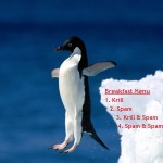 Penguin jumping off an ice berg image